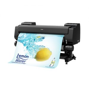 Canon-PRO-6100S-On-A-Stand-With-Second-Roll-And-Print